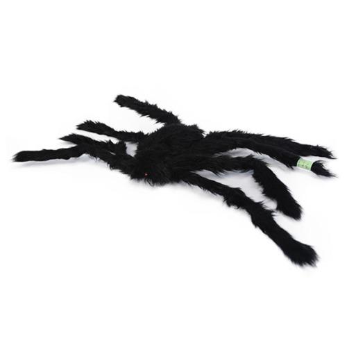 대형괴물 거미